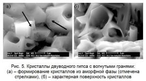 Кристаллы двуводного гипса с вогнутыми гранями